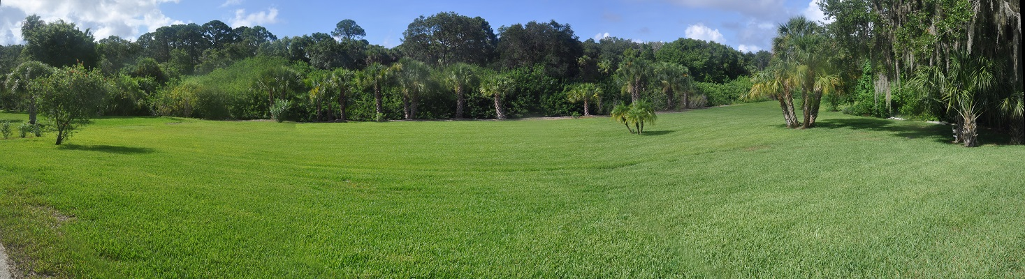 Panoramic view of back yard