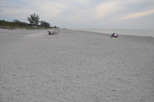 Manasota Beach photo